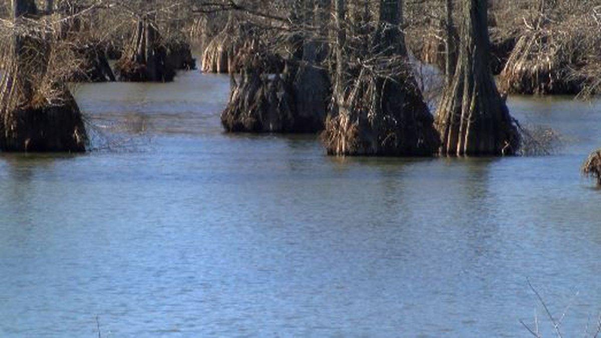 Caddo Lake (Source: KSLA)