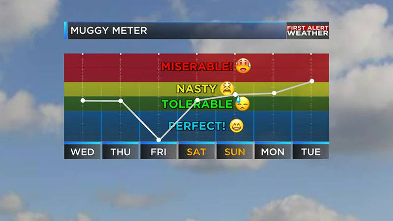 Friday will have lower humidity before a quick increase again over the weekend