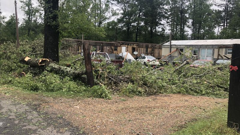 Storm damage in Red River Parish.