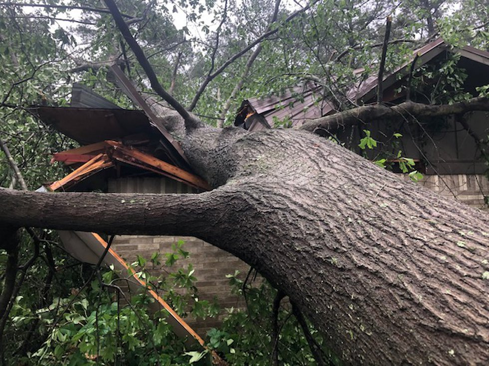 A tree smashes into a home in Fouke, Ark.