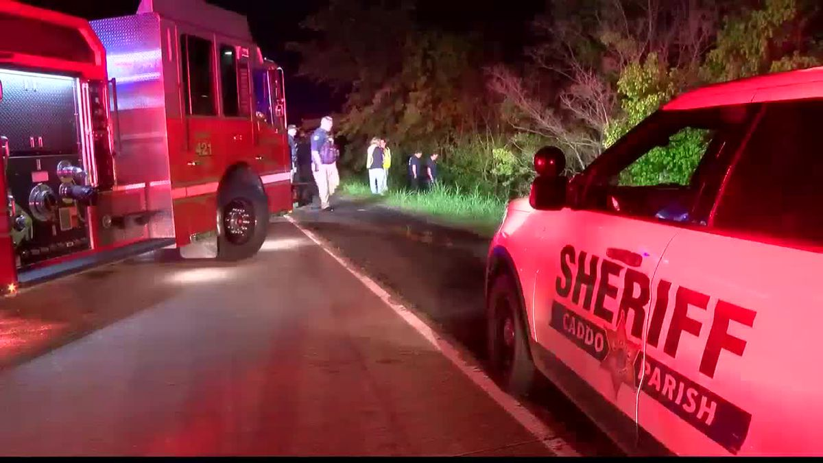 Man fighting for his life after driving car into ravine
