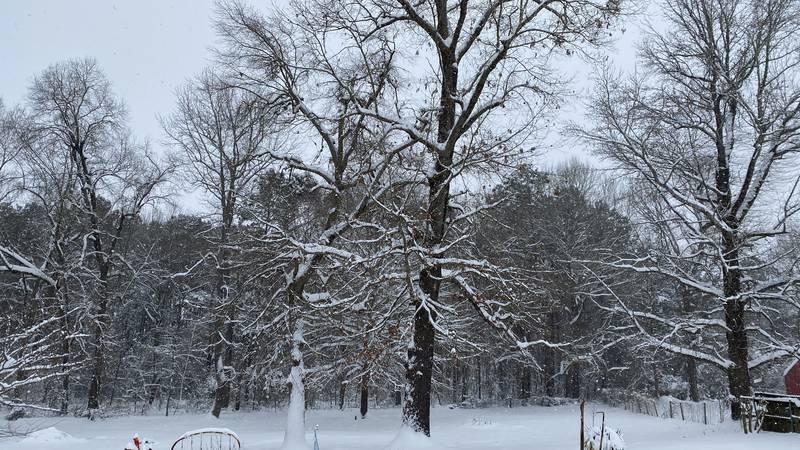 Snow in Liberty-Eylau (south of Texarkana, Texas)