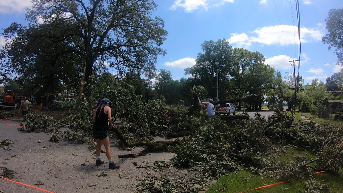 Volunteers moved a fallen tree on Saturday.