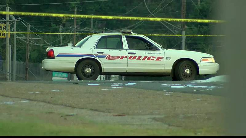 Pedestrian hit and killed