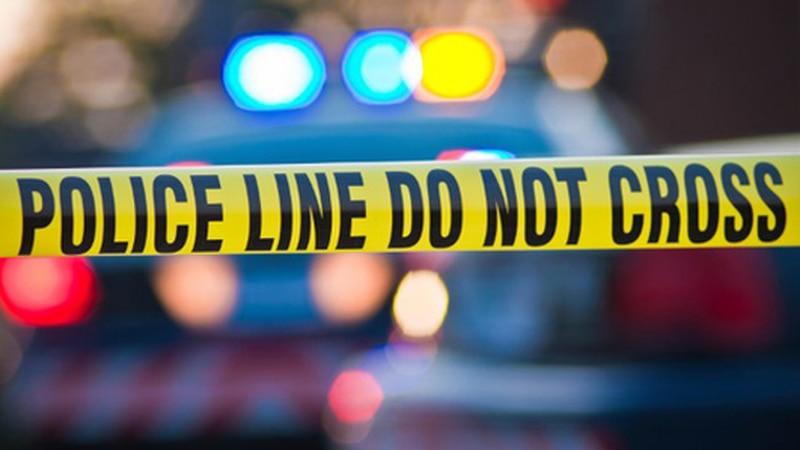 GF Default - Magnolia man dies in Pender County wreck