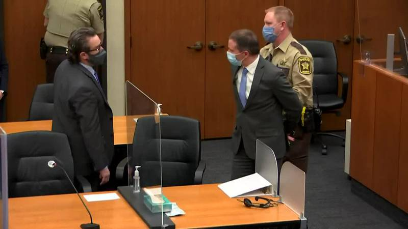 Derek Chauvin will be sentenced on Friday for the murder of George Floyd.
