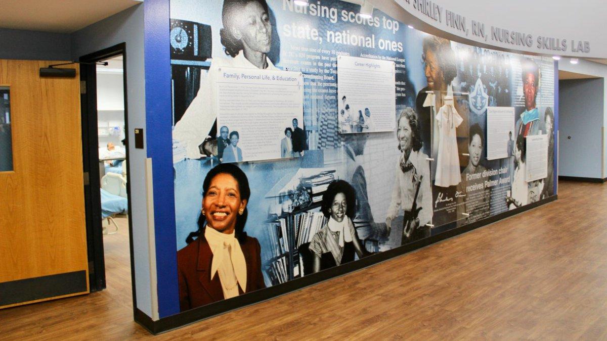 Mural dedicated to Dr. Shirley Finn.