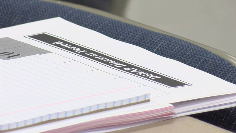 The Department of Children and Family Services  said a system error deactivated some DSNAP...