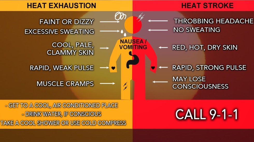 If in the heat for a long time, look for these symptoms to see if you are suffering from a...