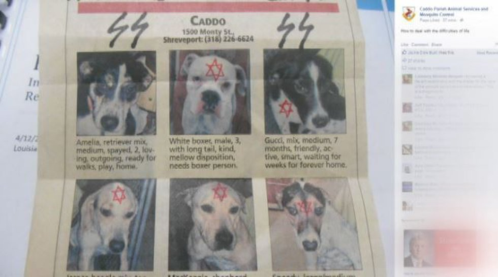 This image was posted Aug. 25 on the Caddo Animal Services and Mosquito Control page on...