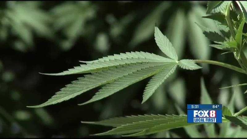 Bill that would allow medical marijuana to be smoked moves forward