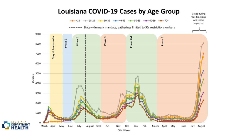 Louisiana COVID-19 cases by age group as of Aug. 20, 2021.