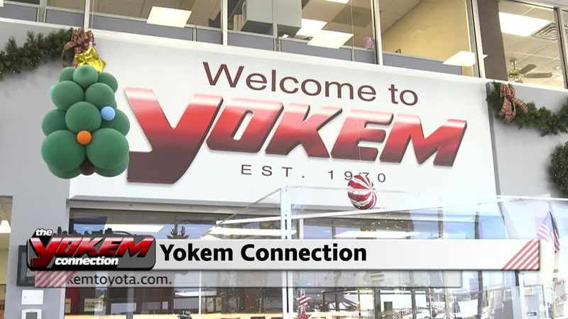 Yokem Connection - Year in Review