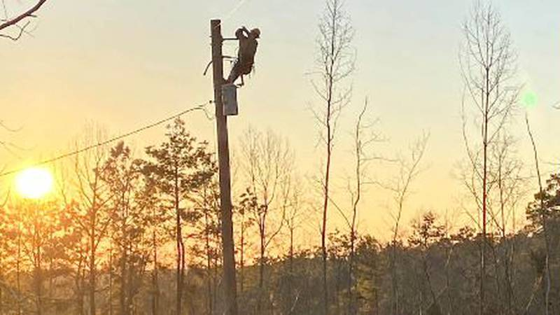 Hundreds of linemen from across East Texas are working to restore power.