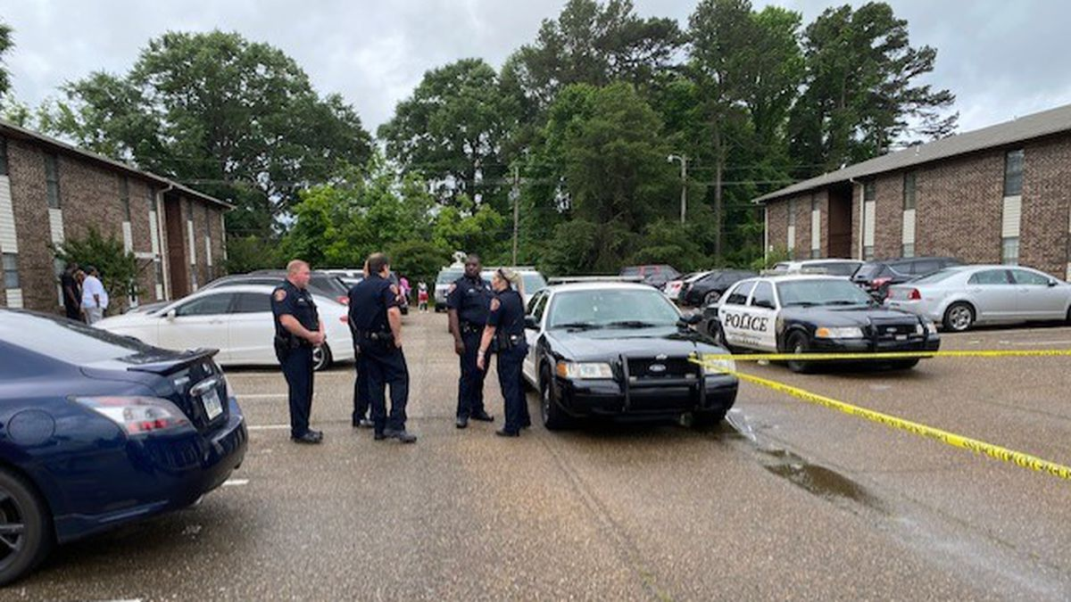 Police were called to the Brook Hollow Apartments in the 2500 block of E. 24th Street....