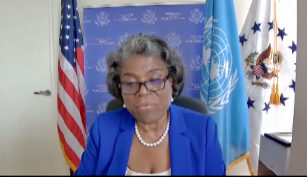 U.N. Ambassador Linda Thomas-Greenfield speaks about being a diplomat  She is a native of...
