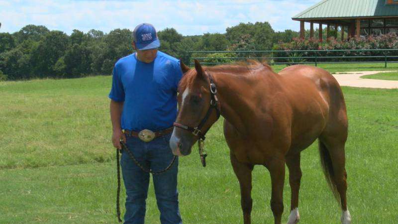 Groveton's Carson Ray and his horse Rocket are looking to be back-to-back national high school...