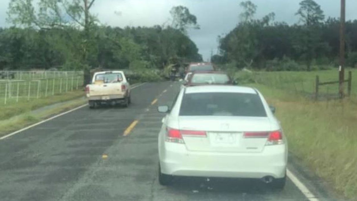 Trees were downed throughout Red River Parish, including across Louisiana Highway 514 west of...